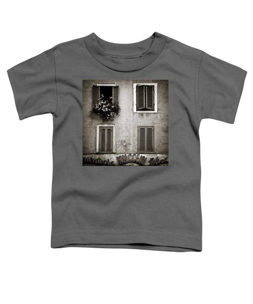 Four Windows Toddler T-Shirt
