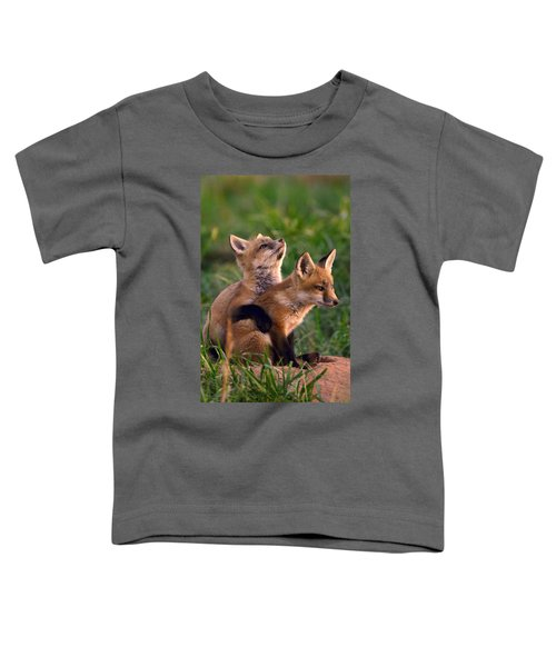 Fox Cub Buddies Toddler T-Shirt