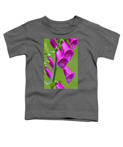 Foxglove Digitalis Purpurea Toddler T-Shirt