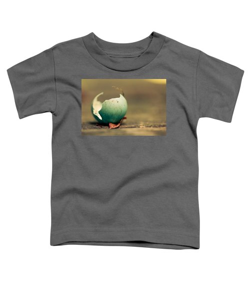 Free Toddler T-Shirt