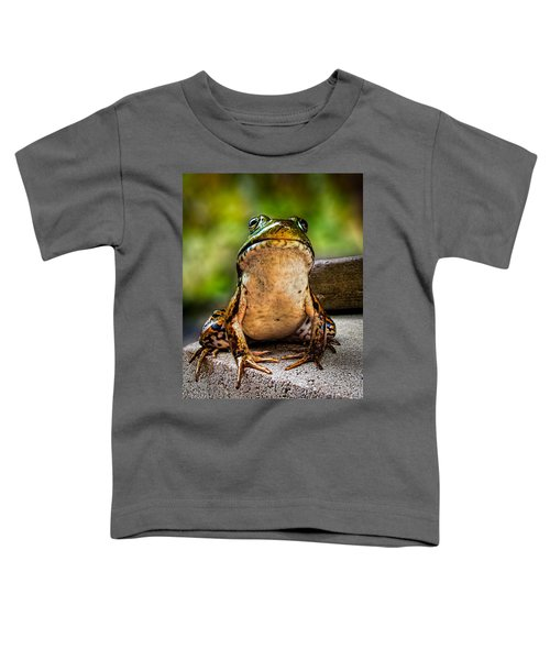 Frog Prince Or So He Thinks Toddler T-Shirt