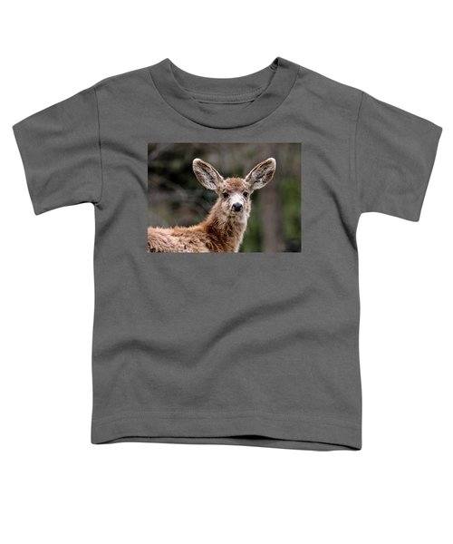 Fuzzy Fawn Toddler T-Shirt