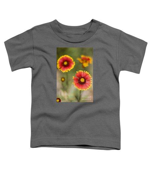 Gaillardia 'arizona Sun' Toddler T-Shirt