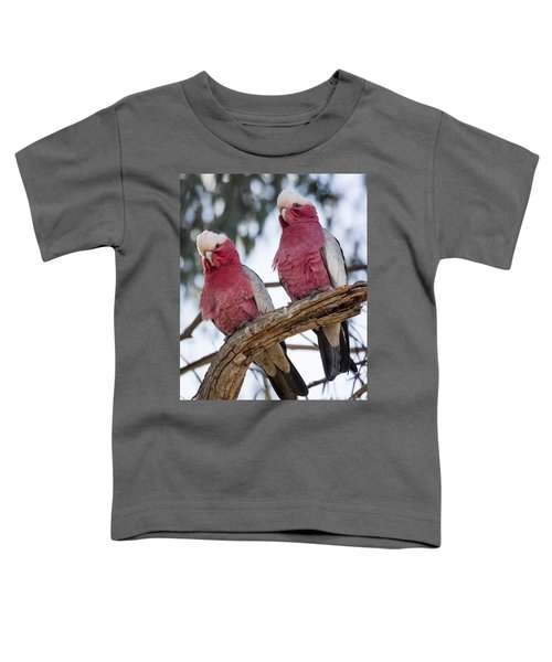 Galahs Toddler T-Shirt