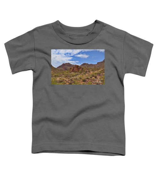 Gates Pass Scenic View Toddler T-Shirt