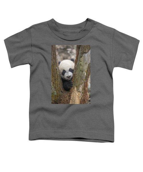 Giant Panda Cub Bifengxia Panda Base Toddler T-Shirt
