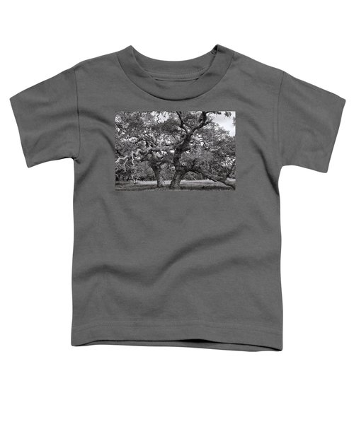 Gnarly Tree  Toddler T-Shirt