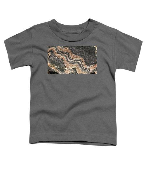 Gneiss Rock  Toddler T-Shirt