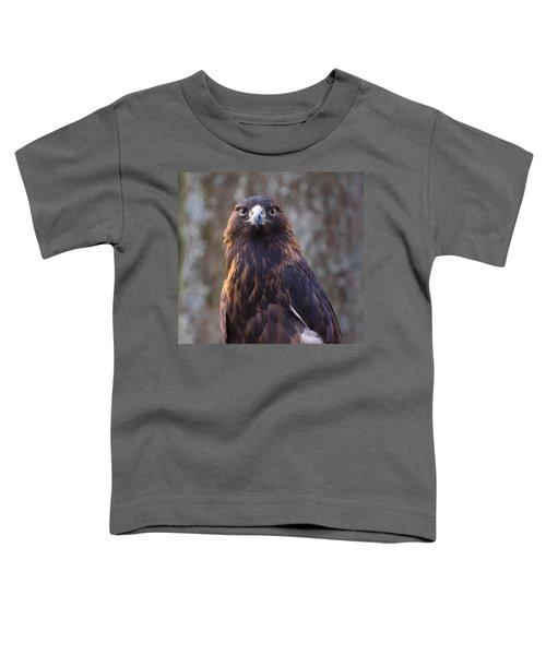 Golden Eagle 4 Toddler T-Shirt