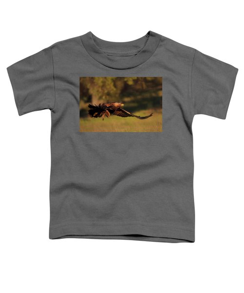 Golden Eagle On The Hunt Toddler T-Shirt