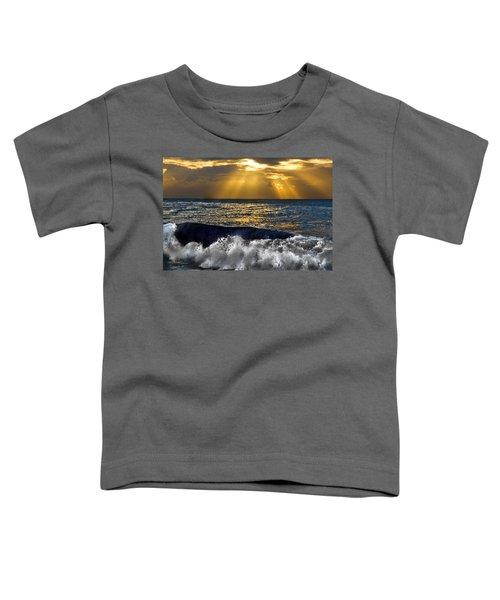 Golden Eye Of The Morning Toddler T-Shirt