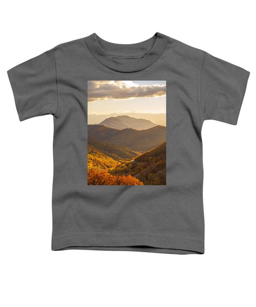 Golden Fall Toddler T-Shirt