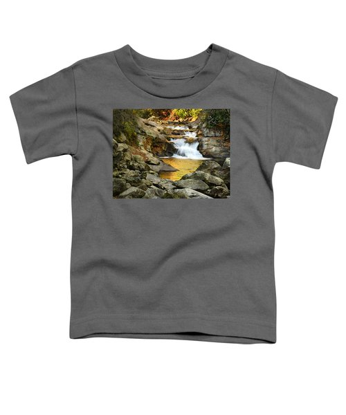 Golden Pond Toddler T-Shirt