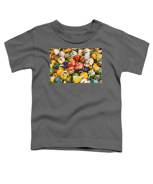 Gourds And Pumpkins At The Farmers Market Toddler T-Shirt