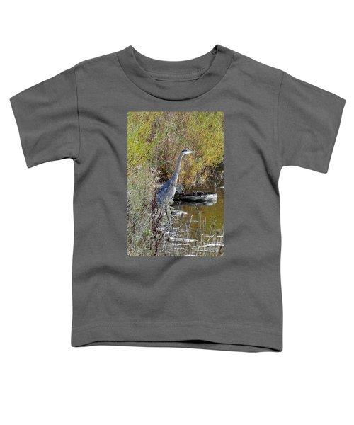 Great Blue Heron - Juvenile Toddler T-Shirt