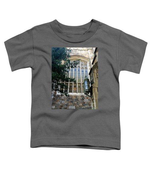 Great Glass Toddler T-Shirt