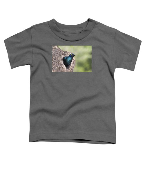 Greater Blue-eared Glossy-starling Toddler T-Shirt
