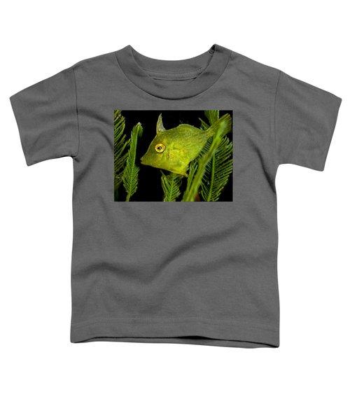 Green Beauty Toddler T-Shirt