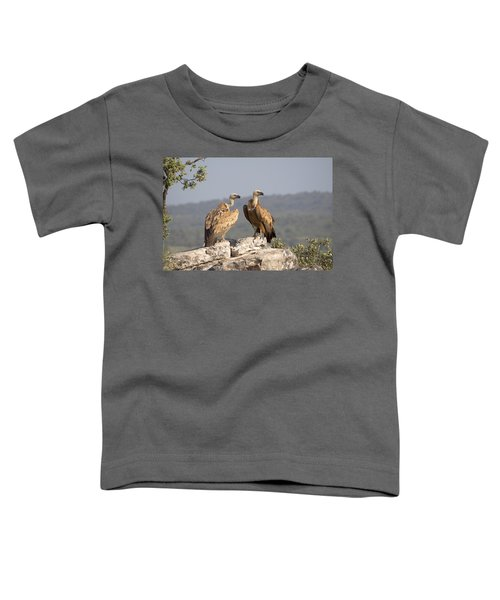 Griffon Vulture Pair Extremadura Spain Toddler T-Shirt by Gerard de Hoog