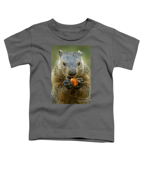Groundhogs Favorite Snack Toddler T-Shirt by Paul W Faust -  Impressions of Light