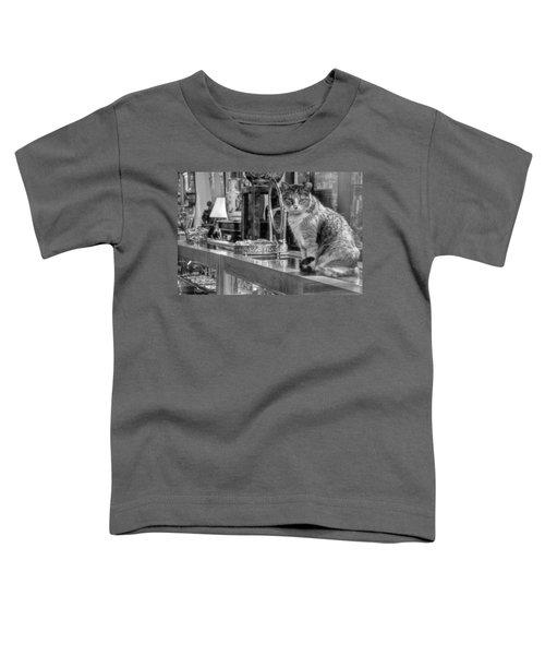 Guard Cat Toddler T-Shirt