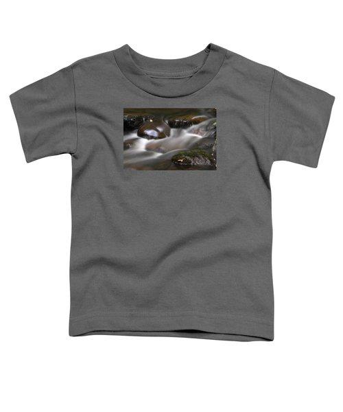 Gurgling Brook Toddler T-Shirt