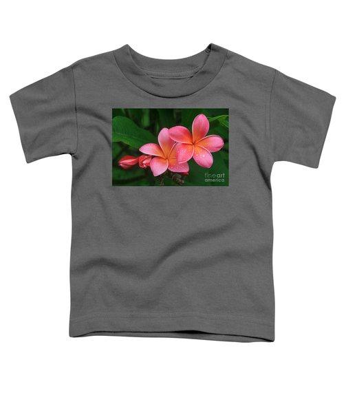 He Pua Laha Ole Hau Oli Hau Oli Oli Pua Melia Hae Maui Hawaii Tropical Plumeria Toddler T-Shirt