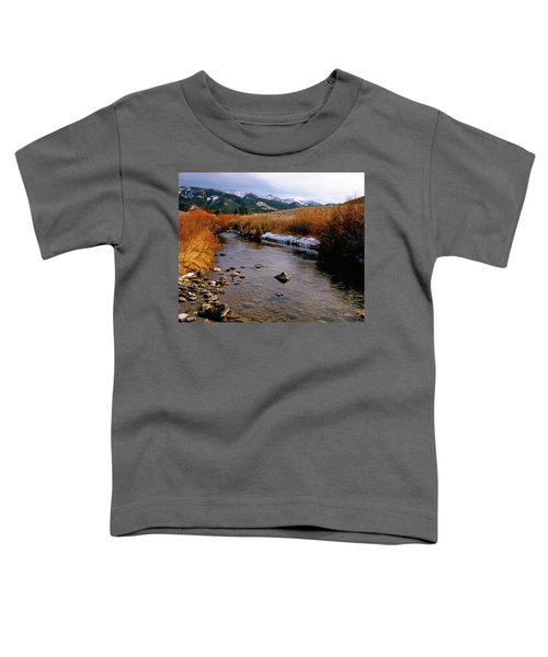 Headwaters Of The River Of No Return Toddler T-Shirt