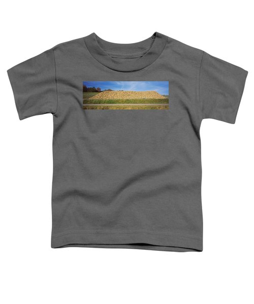 Heap Of Sugar Beets In A Field Toddler T-Shirt