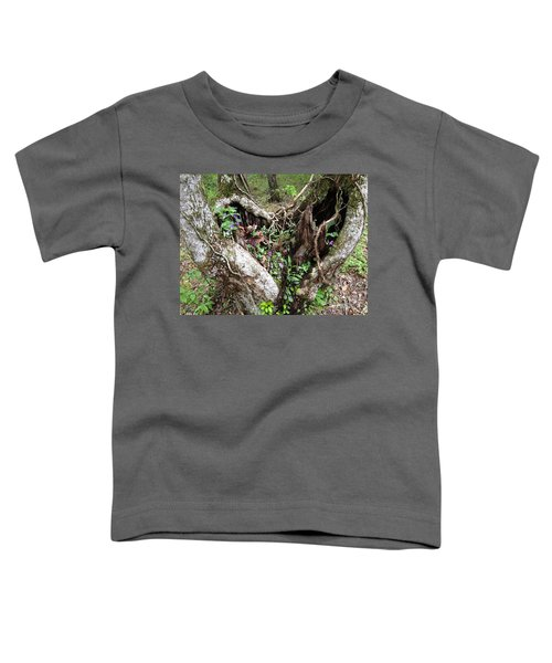 Heart-shaped Tree Toddler T-Shirt
