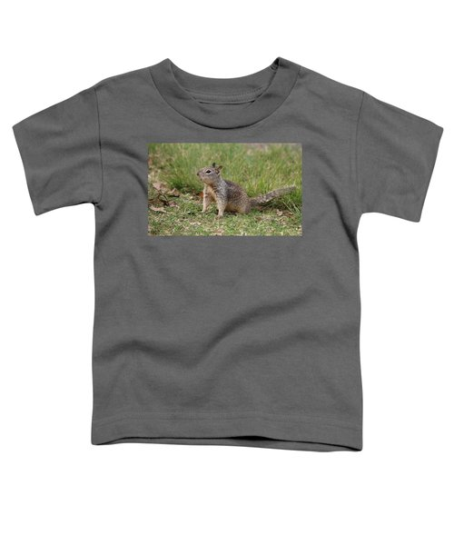Hey There Toddler T-Shirt