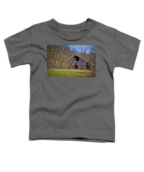 Hidden Barn Toddler T-Shirt