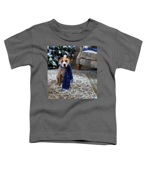 Holiday Warmth Toddler T-Shirt