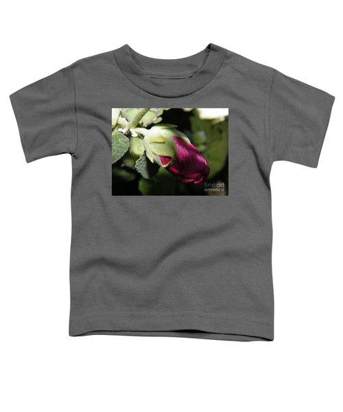 Hollyhock Shadows Toddler T-Shirt
