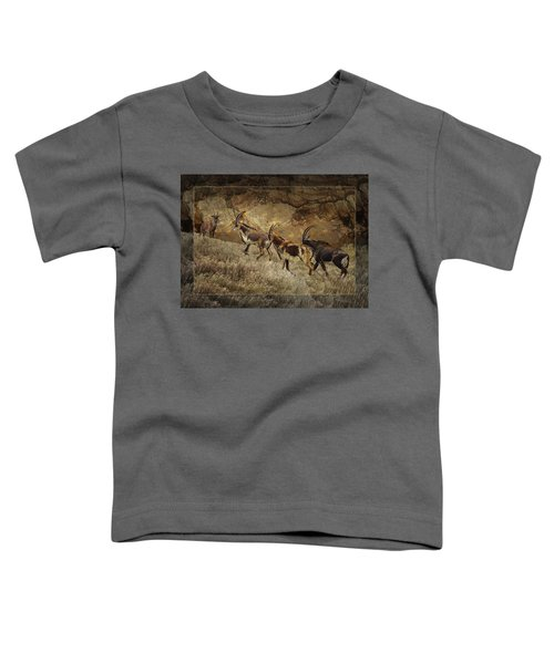 Homeward Bound Toddler T-Shirt