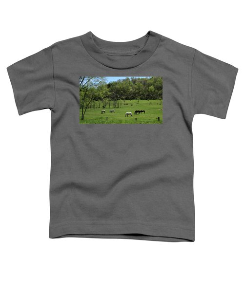 Horse 27 Toddler T-Shirt
