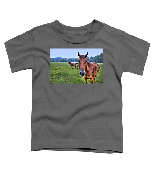 Toddler T-Shirt featuring the photograph Horses In A Field by Jonny D
