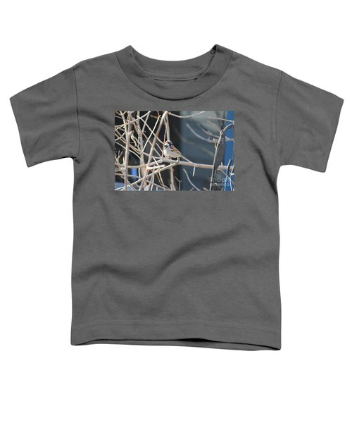 House Sparrow Toddler T-Shirt