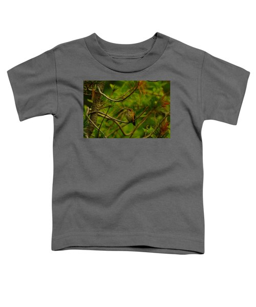 Humming Birds Perched  Toddler T-Shirt