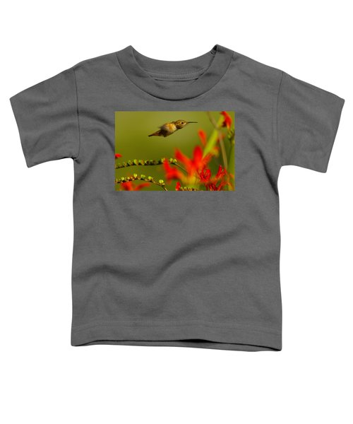 Hummingbird In A Rush Toddler T-Shirt