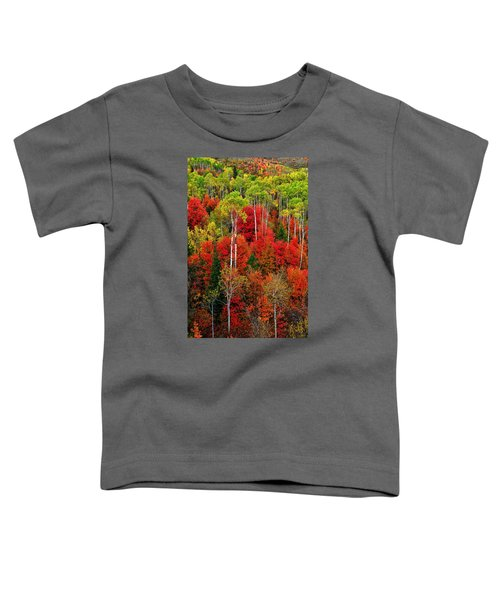 Toddler T-Shirt featuring the photograph Idaho Autumn by Greg Norrell