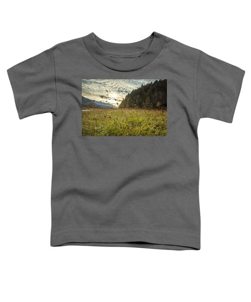 Illumination Toddler T-Shirt