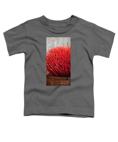 Incense 09 Toddler T-Shirt