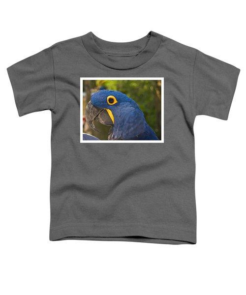 Indigo Macaw Toddler T-Shirt