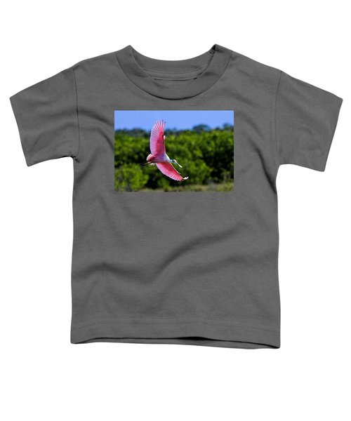 Into The Morning Light Toddler T-Shirt