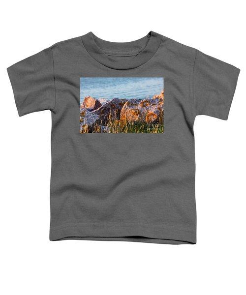 Inverness Beach Rocks  Toddler T-Shirt
