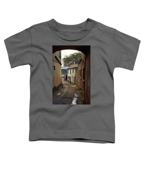 Irish Alley 1975 Toddler T-Shirt