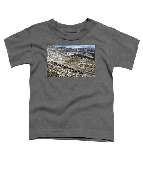 Isberg Packing Toddler T-Shirt