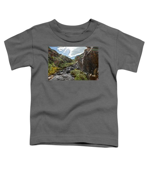 Toddler T-Shirt featuring the photograph Its Raining Rainbows by Miroslava Jurcik