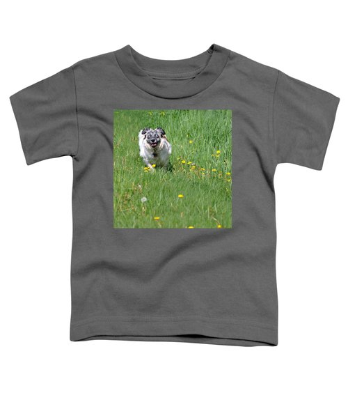 It's Spring - It's Spring Toddler T-Shirt
